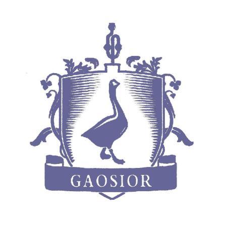 GAOSIOR