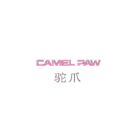 驼爪 CAMEL PAW