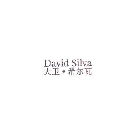 大卫·希尔瓦 DAVID SILVA