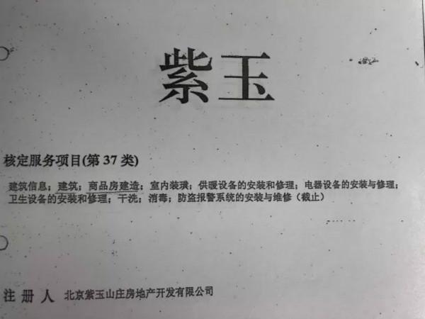 紫玉商标侵权案件