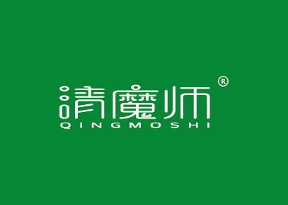 清魔师QINGMOSHI