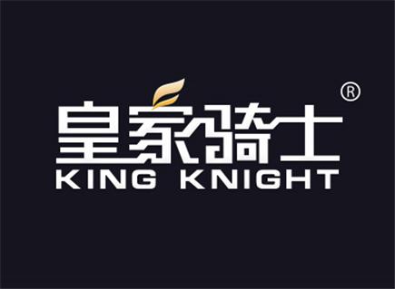 皇家骑士 KING KNIGHT