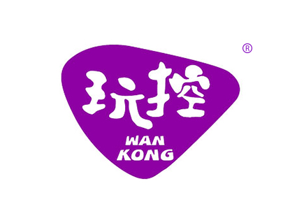 玩控WAN KONG