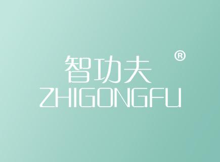 智功夫ZHIGONGFU