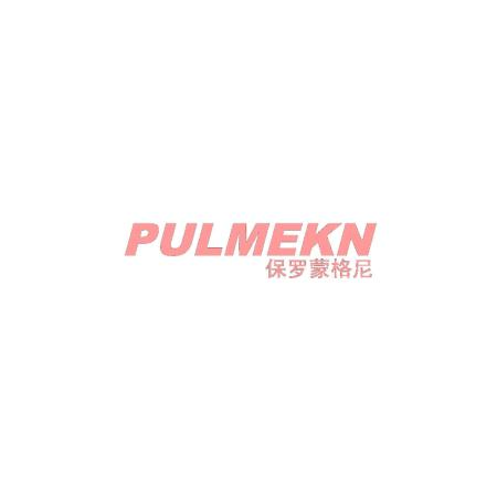 保罗蒙格尼 PULMEKN