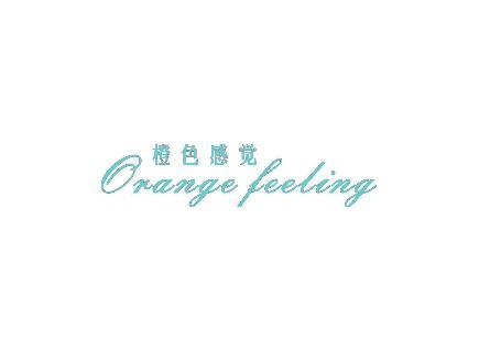 橙色感觉 ORANGE FEELING