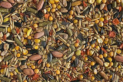农副产品商标转让